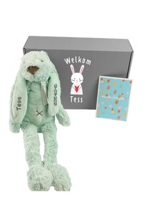 kraam cadeau happy horse knnuffel konijn met naam Fleurtjedag